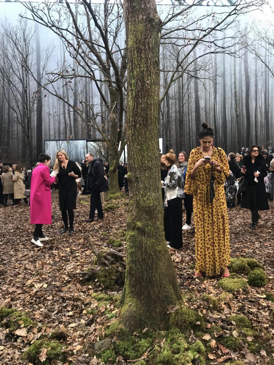 Chanel Forest